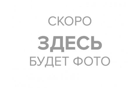 Перец болгарский на гриле 100г
